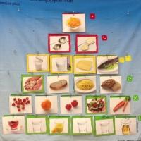 Bild2 Ernährungspyramide_klein