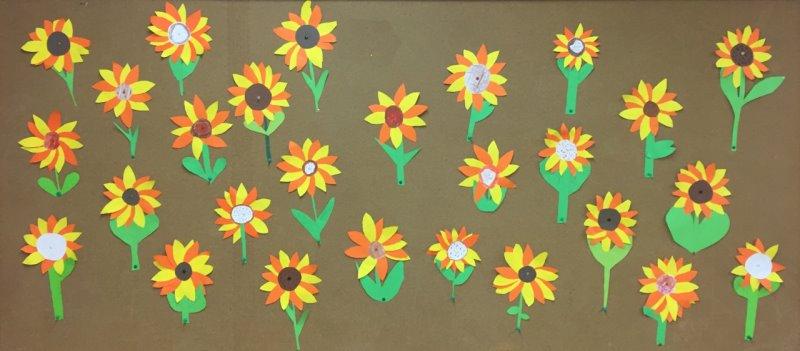 Sonnenblume14